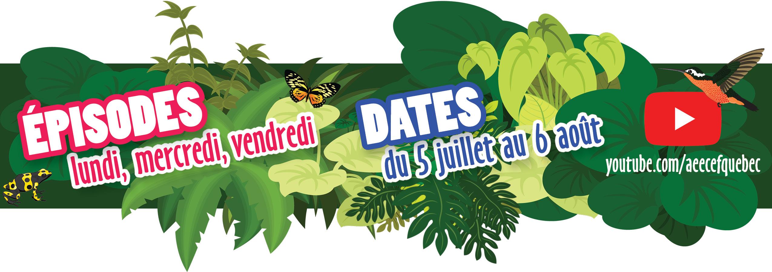 Épisodes et dates