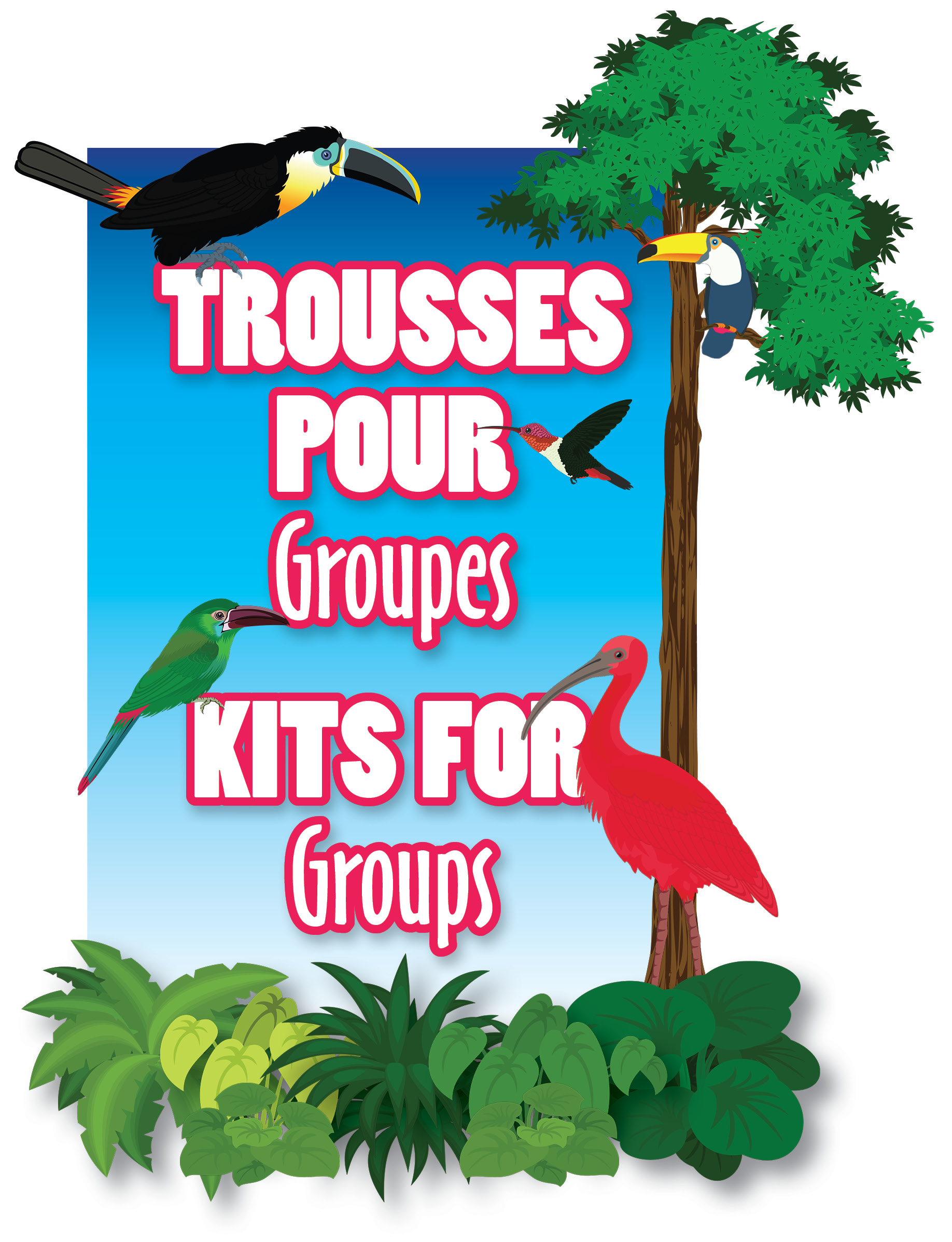 Trousses pour groupes / Kits for groups
